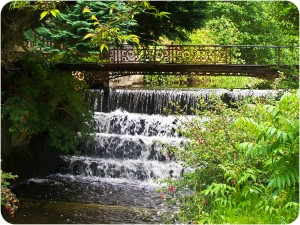 Project 366 Day 113 – Waterfall