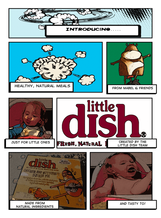 Little Dish Review