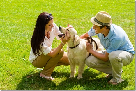 Keeping your Pets Happy and Healthy in Hot Weather